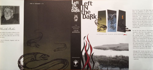 Left in the Dark DJ
